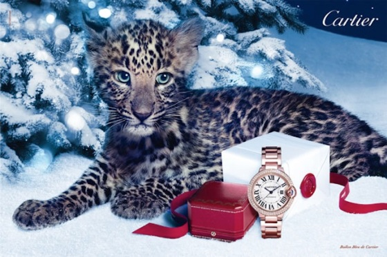 Cartier Winter Tale 2012