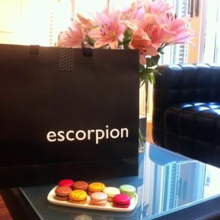 Escorpion showroom